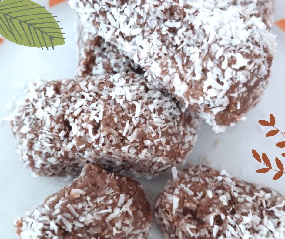 BOUNTY BARS VEGAN
